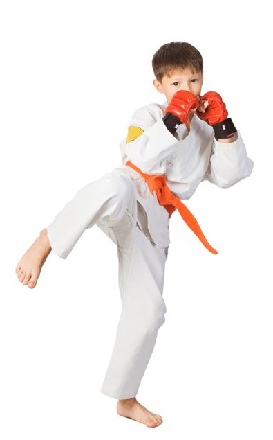 Man practicing kenpo