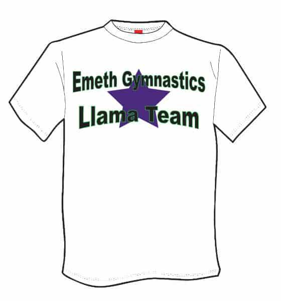 Shirt front 1